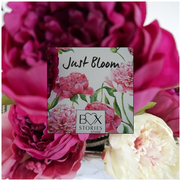 BOX STORIES Box Einführung von gofeminin bei zeitlos bezaubernd