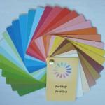 Farbtyp Frühling 1